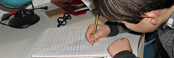 Fracaso escolar y visión